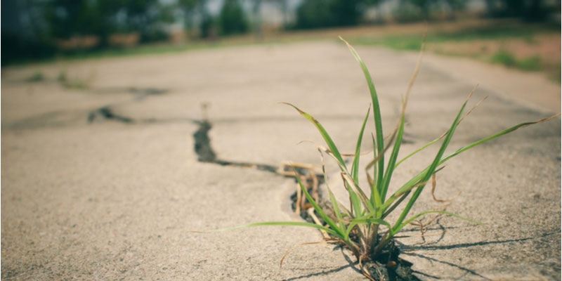 When to Fix Concrete Driveway Cracks in Toronto